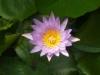 von_canal_therapie_rosenheim15